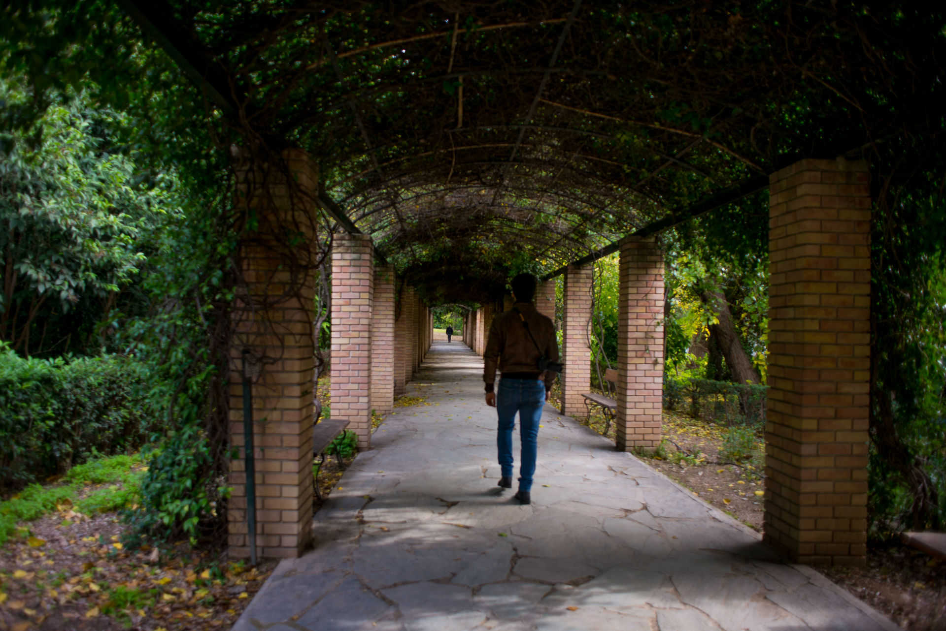 Man walking in the National Garden