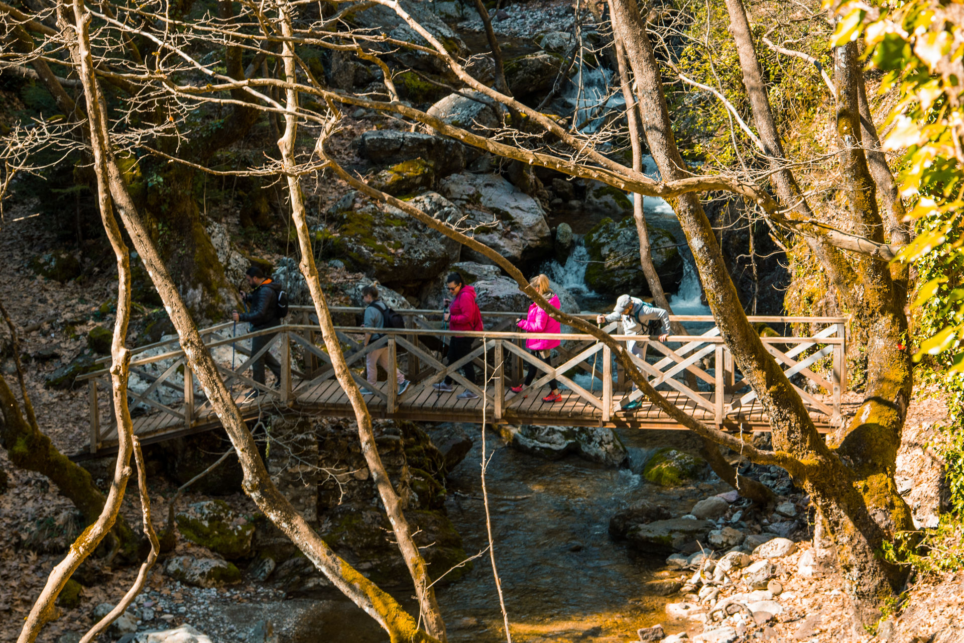 Via Ferrata, Trek across wooden bridges and past little waterfalls