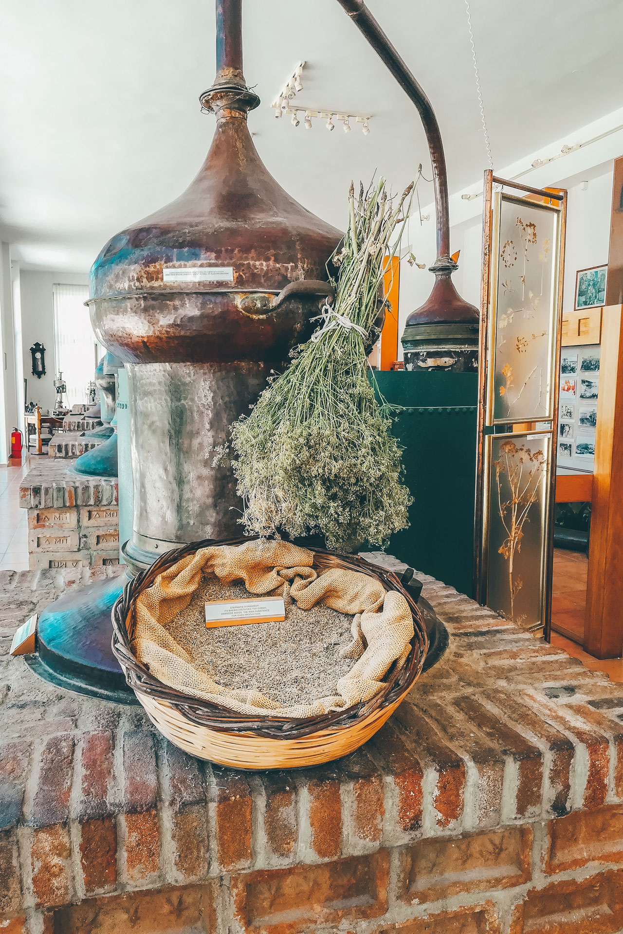 Visiting the Plomari ouzo distilleries can be done at any time of year