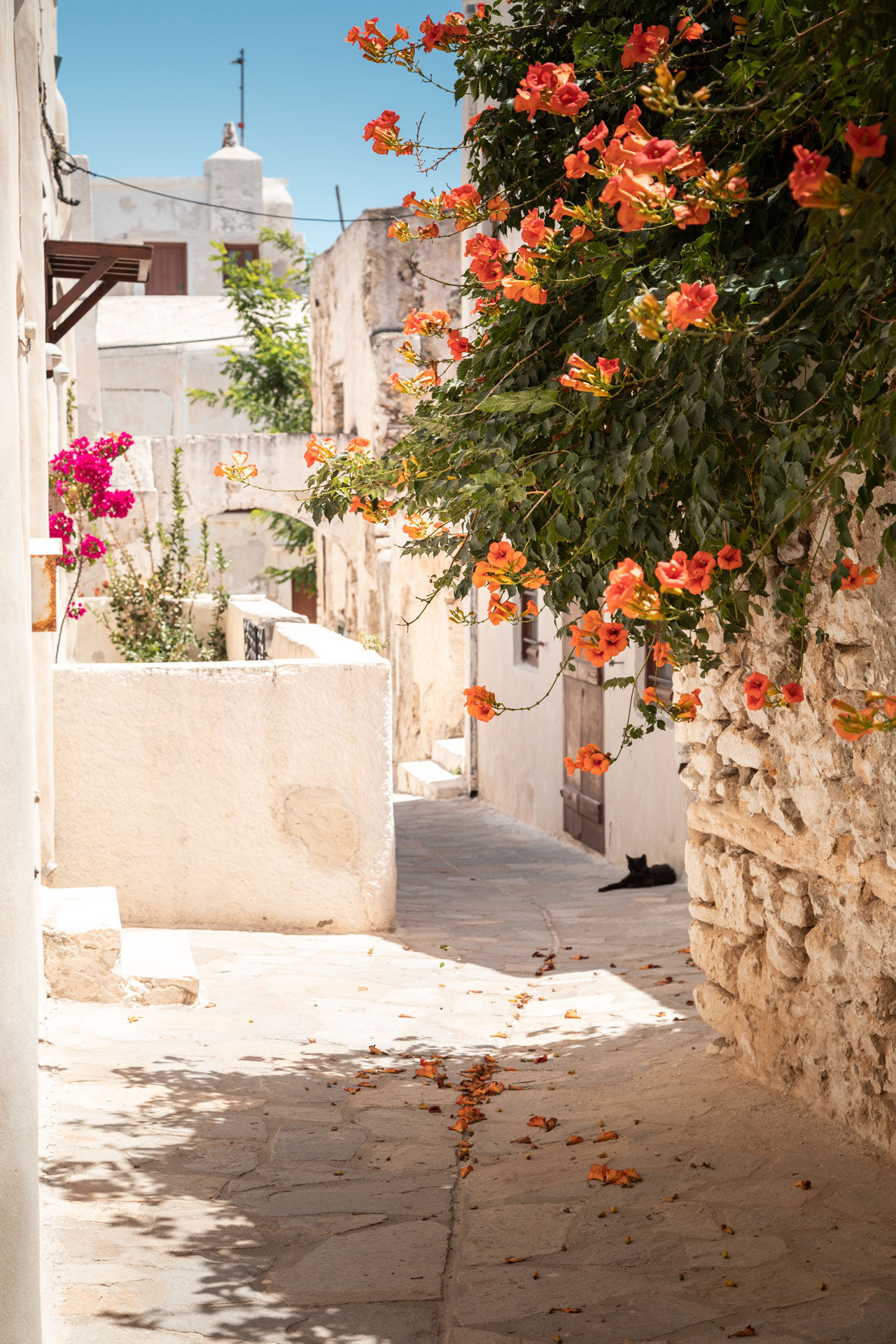 Whitewashed houses and old stone houses in Naxos' Hora