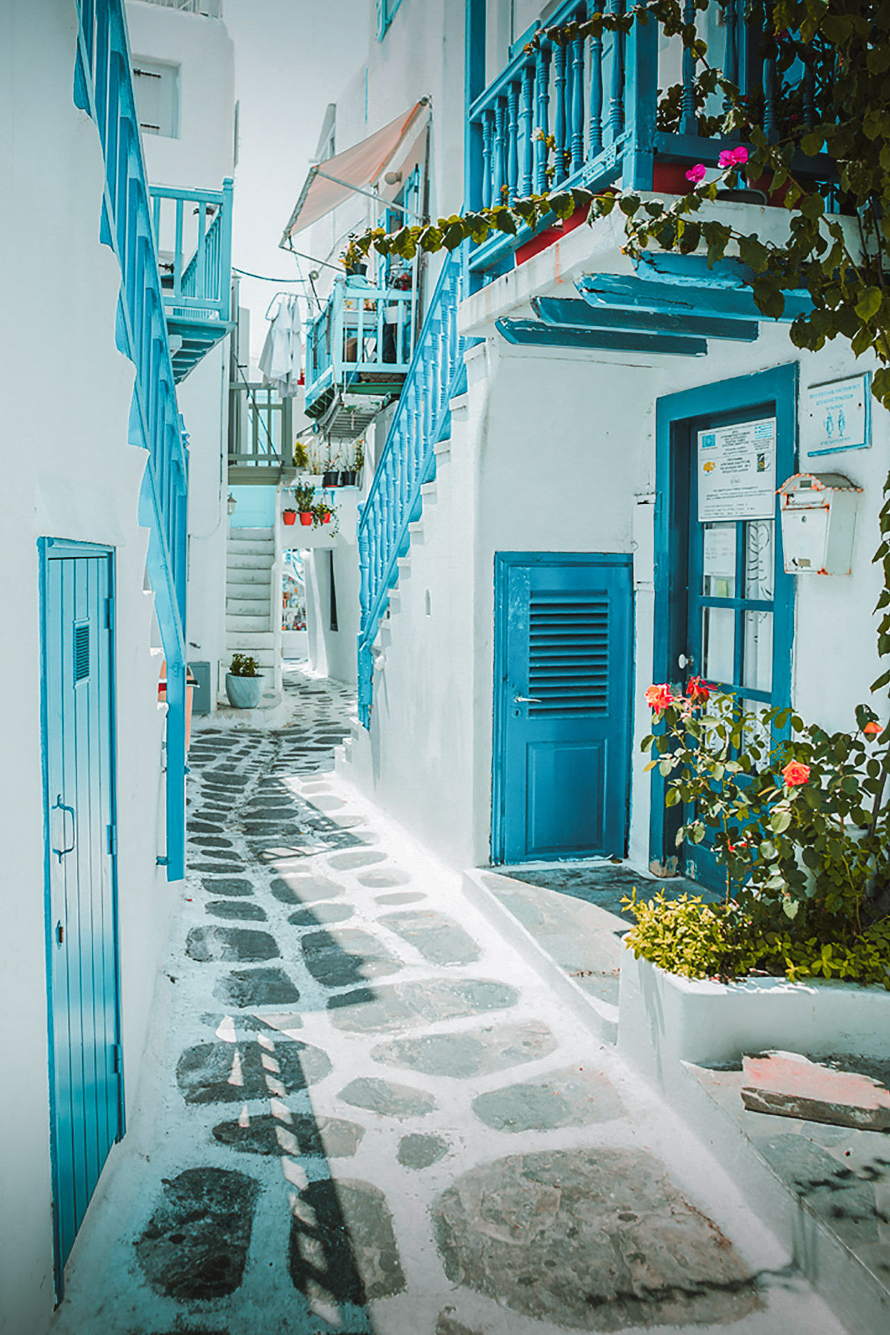 You'll know all about the Cycladic beauty of Hora from the images of cascading bougainvillea and snow-white houses with blue window frames and balconies