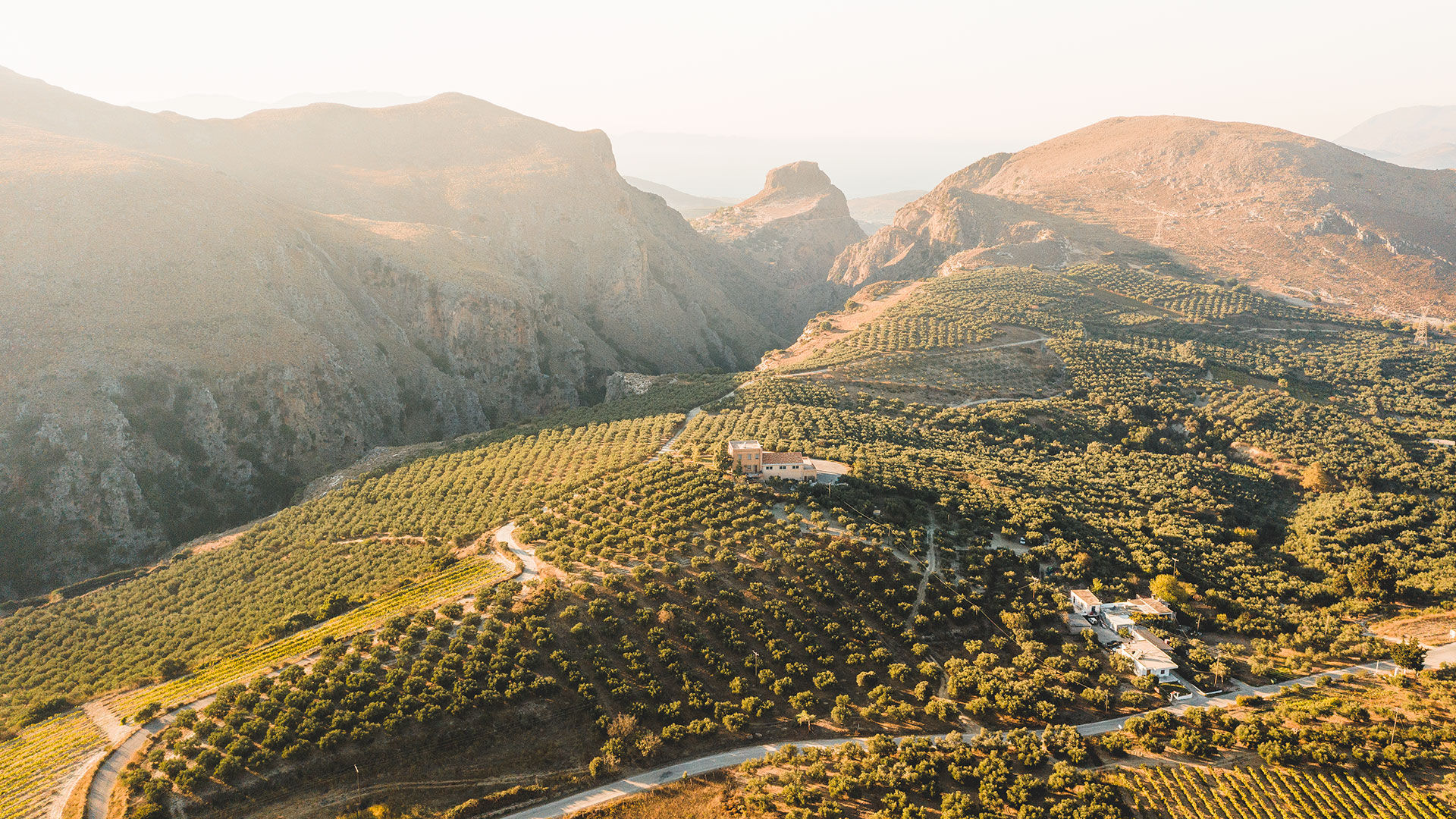 The sight of olive groves will accompany just about every journey outside Chania town