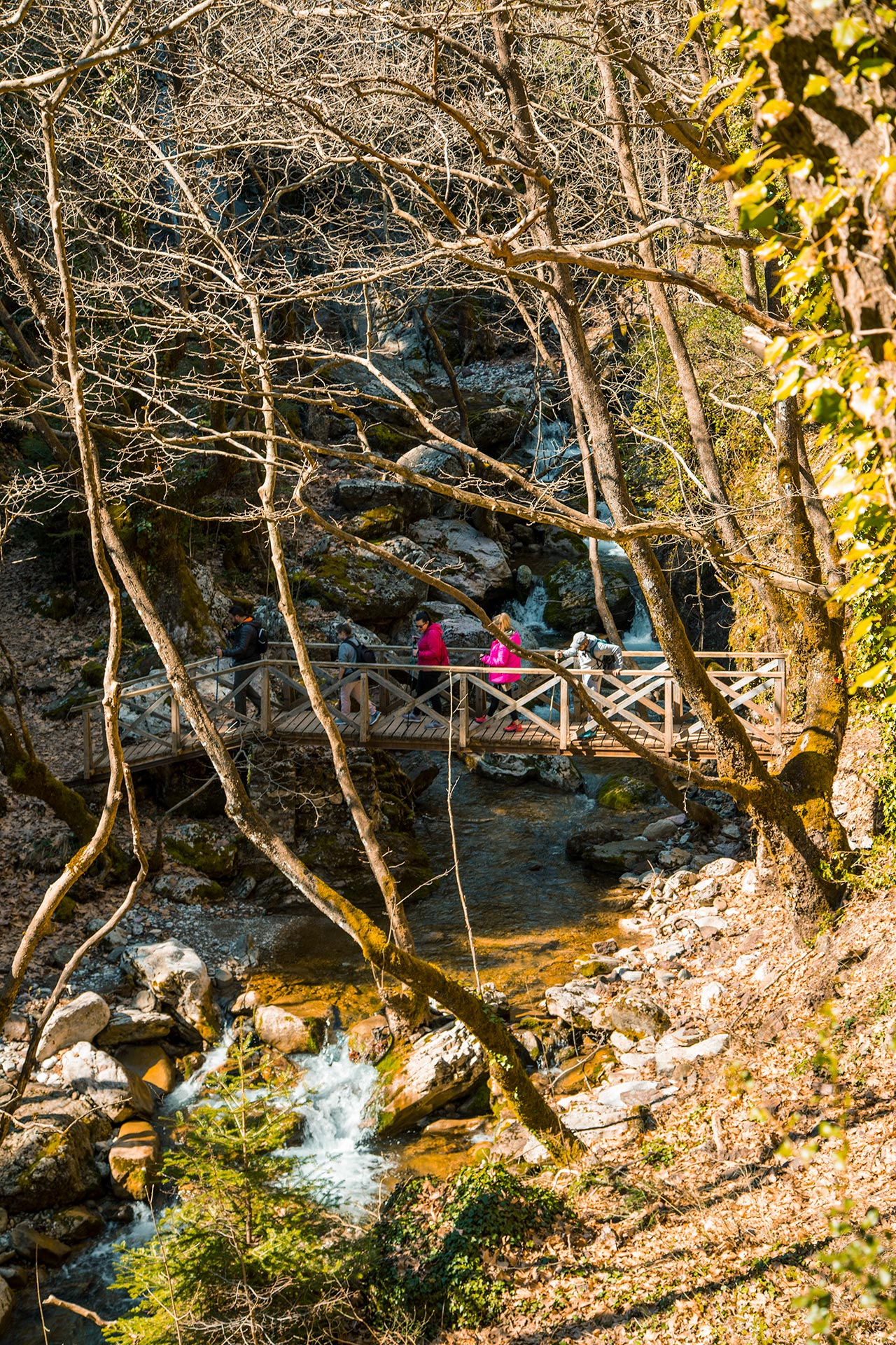 Heading out from of the village of Proussos you follow a well-marked trail up the gorge, crossing little wooden bridges