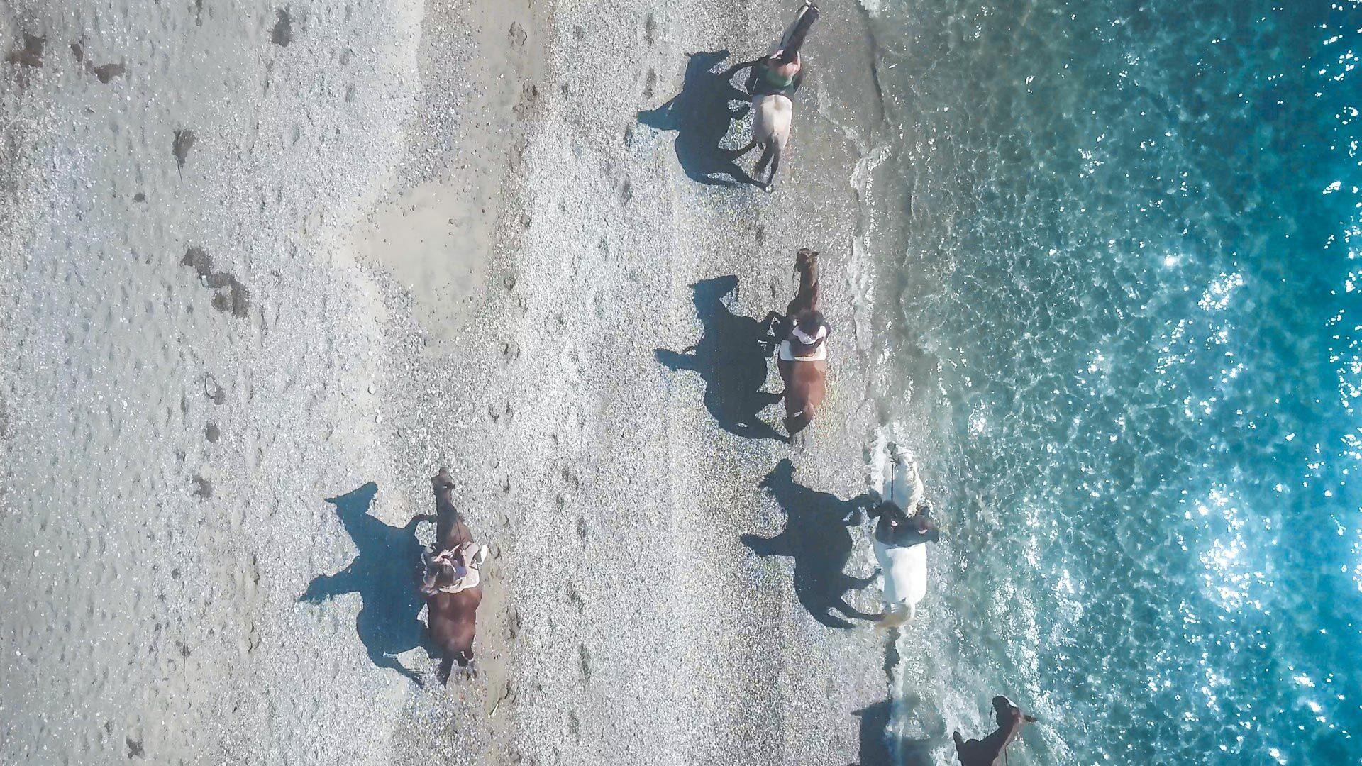 Seaside horse ride activity close to Kalamata city