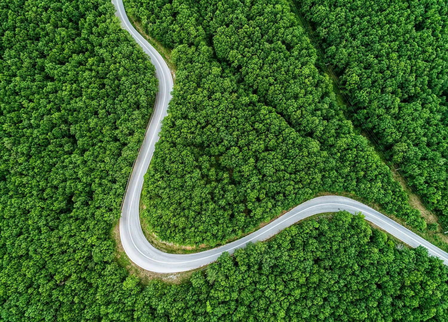 Aerial view of a provincial road passing through a forest in Chalkidiki