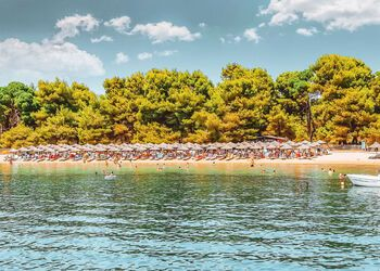 Be seduced by the natural charms of Skiathos' Koukounaries beach