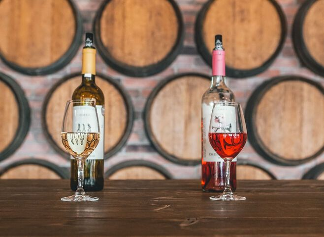 Enjoy a wine tasting experience in Nemea